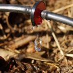 Капельный полив своими руками в теплице